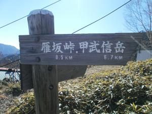 Karisakarei_20111029_289