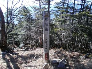 Karisakarei_20111029_396