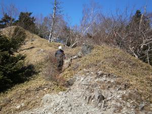 Karisakarei_20111029_450