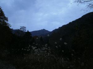 Hotakayama_20111103_039