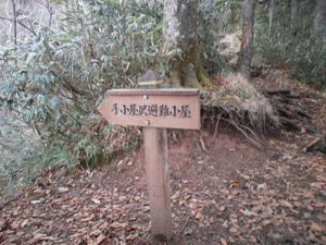 Hotakayama_20111103_154