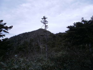 Hotakayama_20111103_277