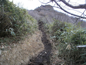 Hotakayama_20111103_452