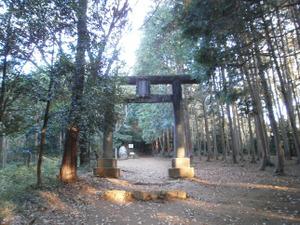 Sukariyama_20111123_012