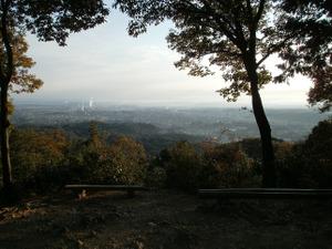 Sukariyama_20111123_062