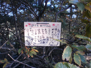 Sukariyama_20111123_065