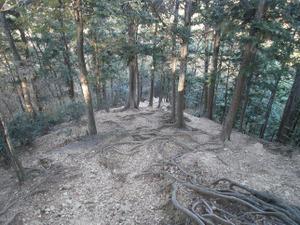 Sukariyama_20111123_070