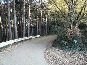 Sukariyama_20111123_077