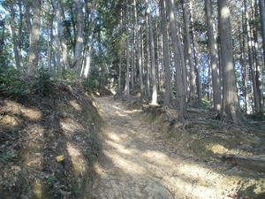 Sukariyama_20111123_087