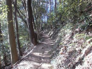 Sukariyama_20111123_111