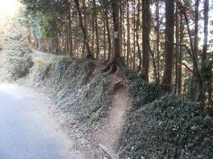 Sukariyama_20111123_128