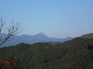 Sukariyama_20111123_137