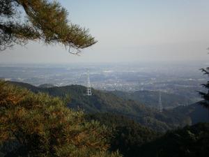 Sukariyama_20111123_141_2