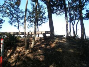 Sukariyama_20111123_149