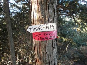 Sukariyama_20111123_165