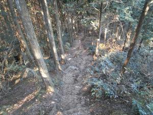 Sukariyama_20111123_171