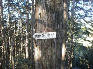 Sukariyama_20111123_172_2