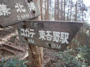 Sukariyama_20111123_178