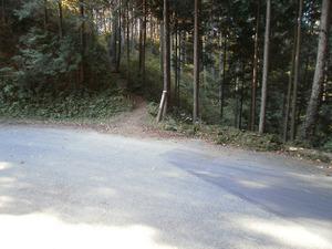 Sukariyama_20111123_190