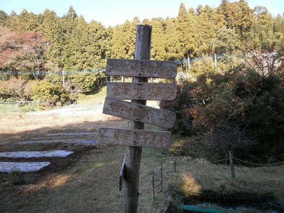 Sukariyama_20111123_215