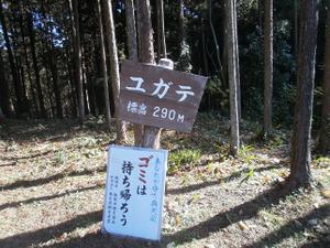 Sukariyama_20111123_223