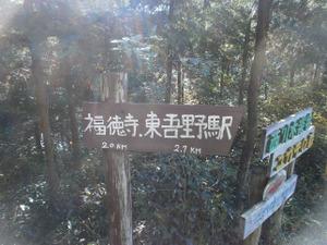 Sukariyama_20111123_233_2