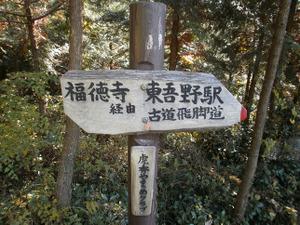 Sukariyama_20111123_235