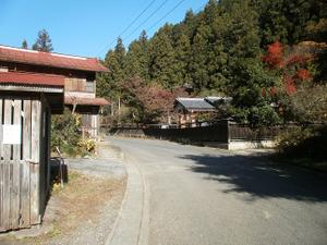 Sukariyama_20111123_247