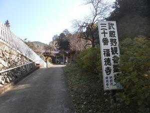Sukariyama_20111123_257