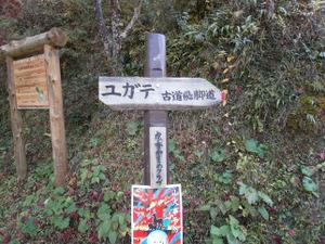 Sukariyama_20111123_261
