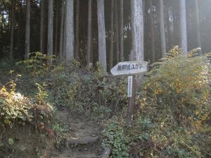 Sukariyama_20111123_262