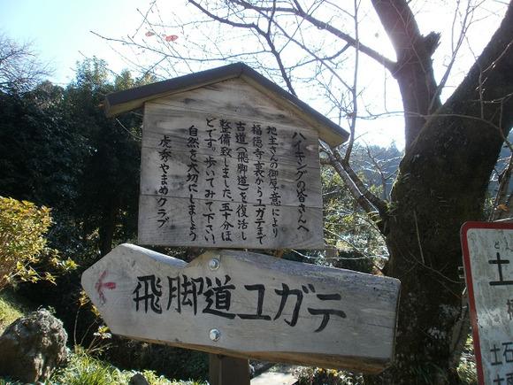 Sukariyama_20111123_266