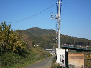 Sukariyama_20111123_295