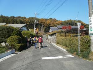Sukariyama_20111123_298_2
