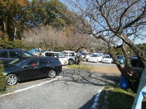 Sukariyama_20111123_300
