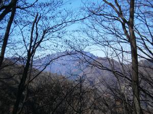 Chichibuontakesan_20111126_199