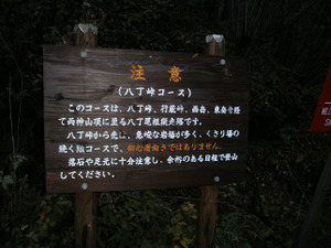 Ryogamiyama_20111120_028