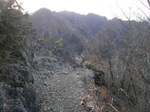 Ryogamiyama_20111120_212