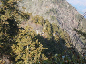 Ryogamiyama_20111120_226
