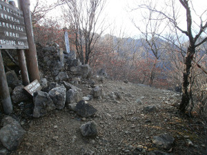 Ryogamiyama_20111120_228