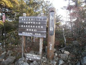 Ryogamiyama_20111120_229