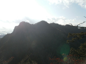 Ryogamiyama_20111120_236