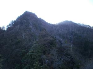 Ryogamiyama_20111120_274