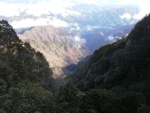 Ryogamiyama_20111120_279