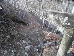 Ryogamiyama_20111120_391