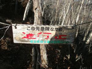 Ryogamiyama_20111120_397