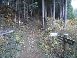 Kasayama_doudaira_20111204_104