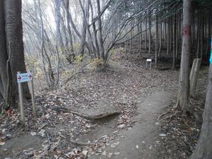 Kasayama_doudaira_20111204_111