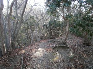 Kasayama_doudaira_20111204_169