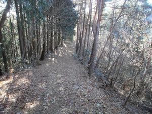 Kasayama_doudaira_20111204_207